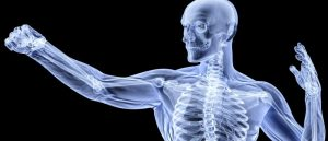 Roasted chana for healthy bones